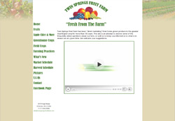 Screenshot of the website for Twin Spring Fruit Farms